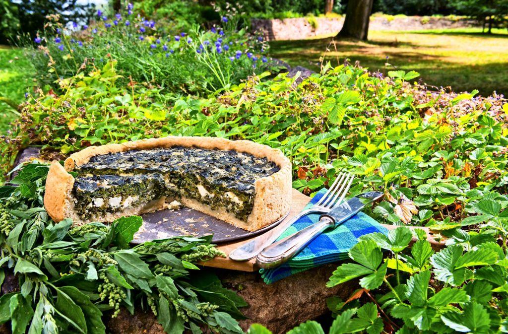 Aus Melde, auch bekannt als Spanischer Spinat, lässt sich salziger Kuchen backen. Foto: Micha Brem