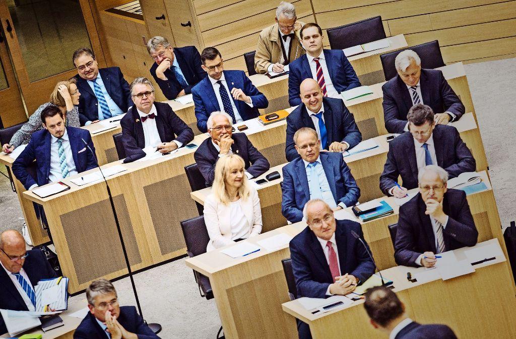 Die Fraktion der AfD im Landtag – fleißig und mit einem dominierenden politischen Thema. Foto: dpa
