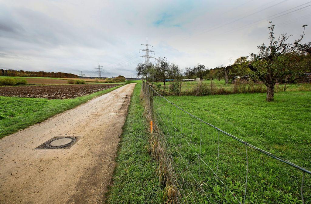 Dieser Feldweg ist die Radverbindung  von Ebersbach-Roßwälden nach Hochdorf. Ebersbach wird ihn ausbauen, Hochdorf allerdings nicht. Foto: Horst Rudel