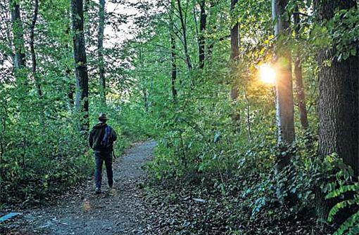 Das Land der Waldbesitzer