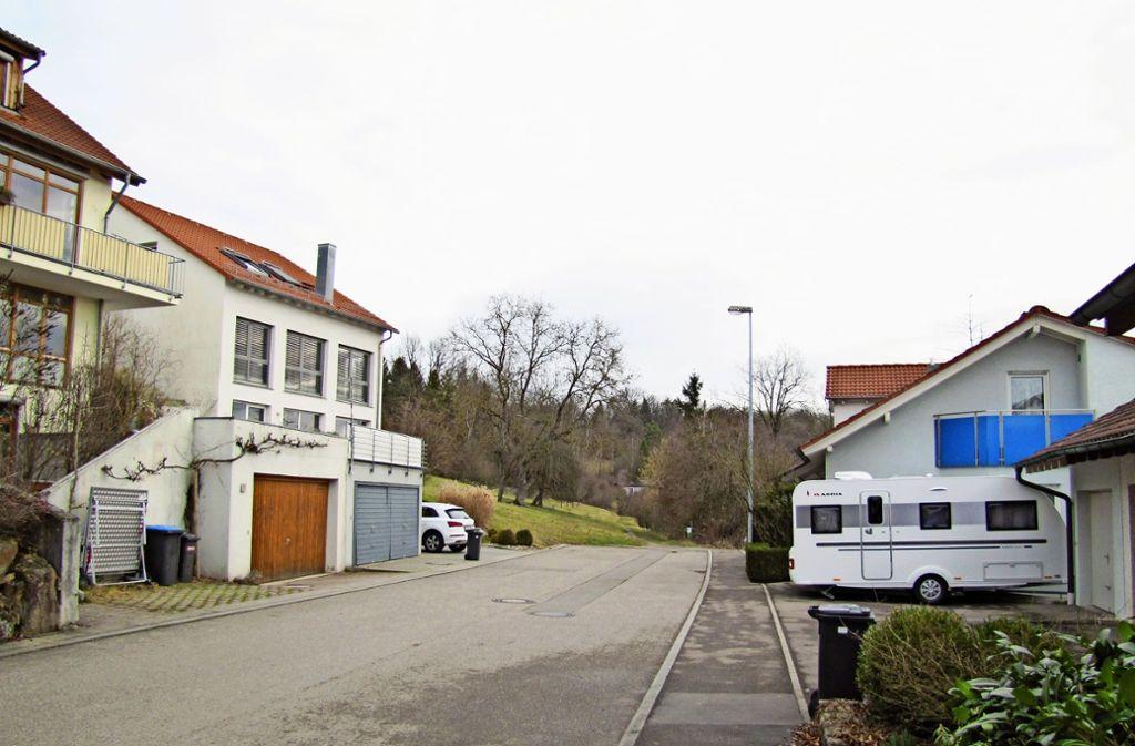 Im Moment endet die Schillerstraße an den Wiesen, auf denen einmal das Baugebiet Liebenau VII entstehen soll. Foto: C. Barner