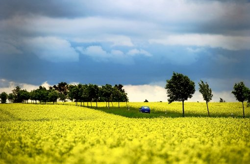 Bioenergie hat noch Potenzial