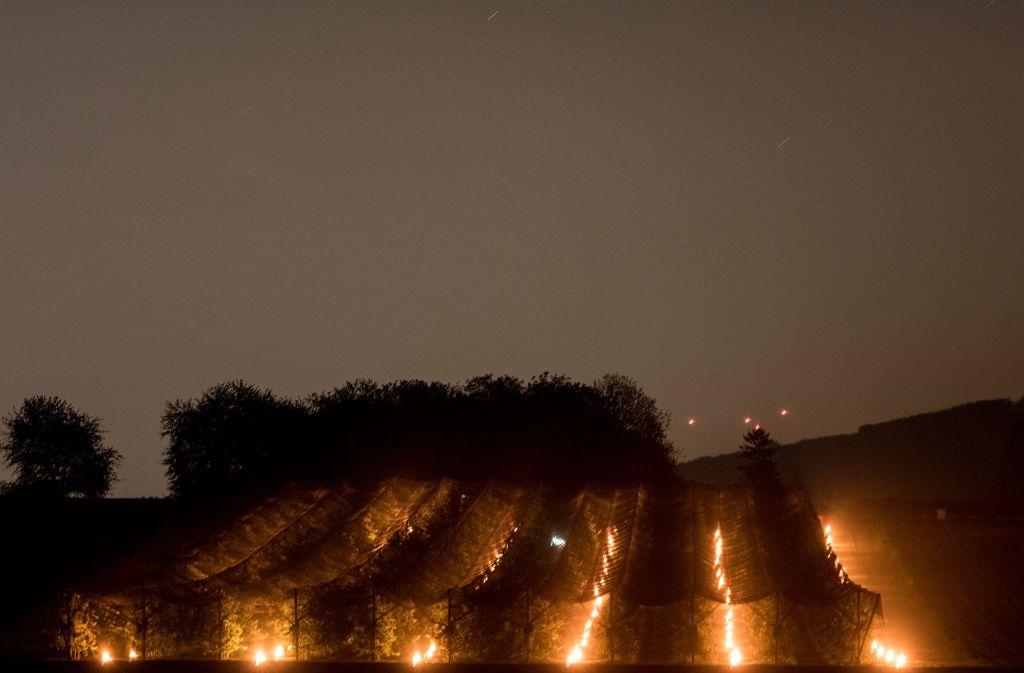 Riesige Wachskerzen in Eimern brennen bei Norsingen (Baden-Württemberg) zwischen Pfirsichbäumen. Foto: dpa