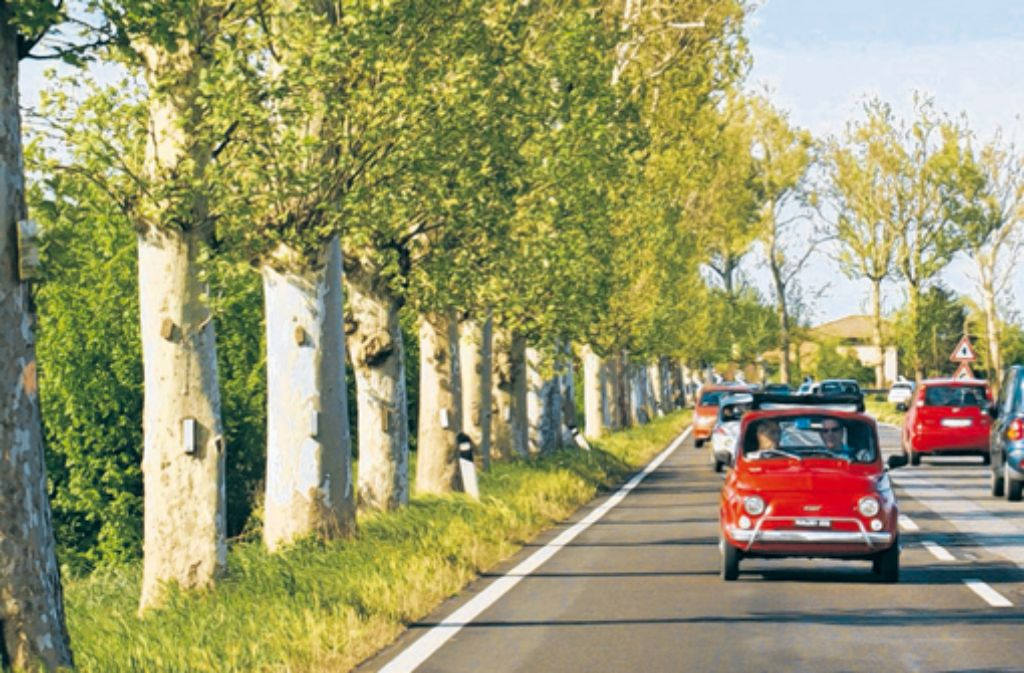 Gemütlich geht es durch die Emilia Romagna in historischen Fiats.  Foto: Abel