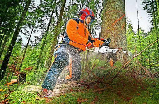 Die Kommunen kooperieren im Wald