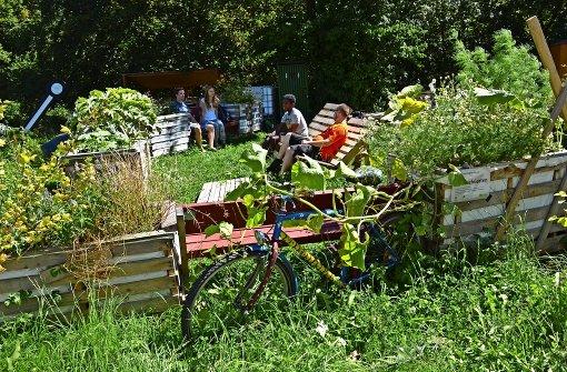 Wenn Studenten zu Gärtnern werden