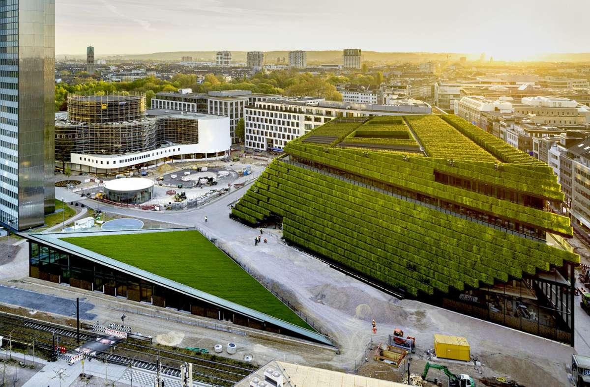 Kö-Bogen II in Düsseldorf: 35000 Hainbuchenhecken wachsen auf Dach und Fassade. Unsere Bildergalerie zeigt weitere lebende Häuser in aller Welt. Foto: HGEsch//Ingenhoven Architects