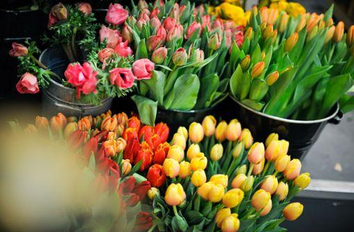 Wann Blumenläden im Südwesten öffnen dürfen