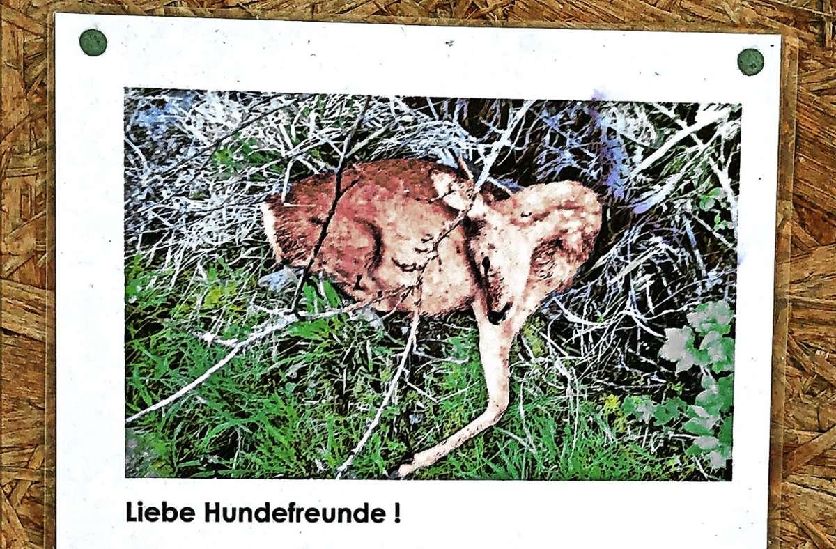 Plakat mit Schockwirkung aus dem Kreis Ludwigsburg. Foto: Susanne Mathes