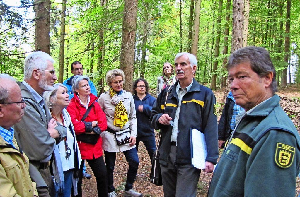 Forstdirektor Armin Tomm (2.v.r.)  zeigt beim Waldumgang, dass bereits erste Schäden  durch die Erderwärmung an Bäumen zu erkennen sind. Foto: Cedric Rehman
