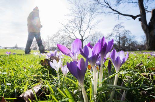 Frühlingsgefühle können bleiben – Temperaturen bis 21 Grad