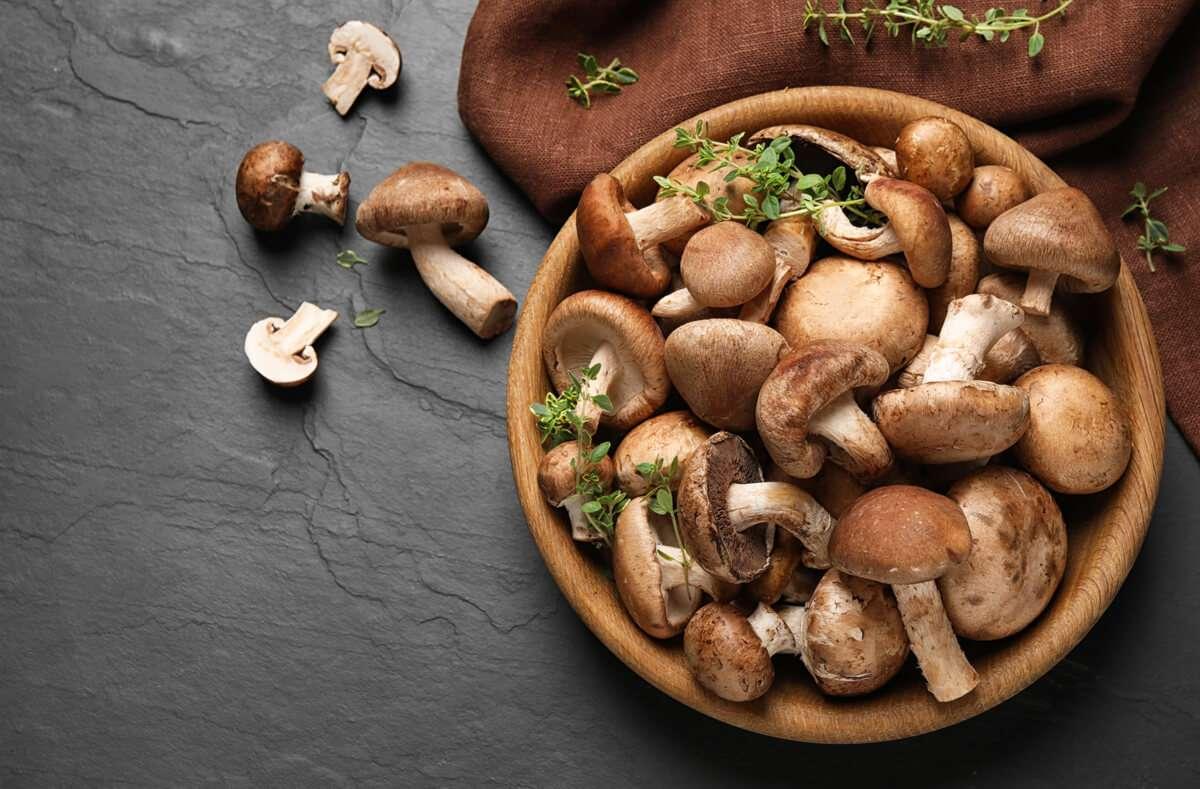 Wenn Sie richtig vorgehen, können Sie Pilze problemlos einfrieren. Wir zeigen Ihnen dazu alle wichtigen Schritte in der Anleitung. Foto: New Africa / Shutterstock.com