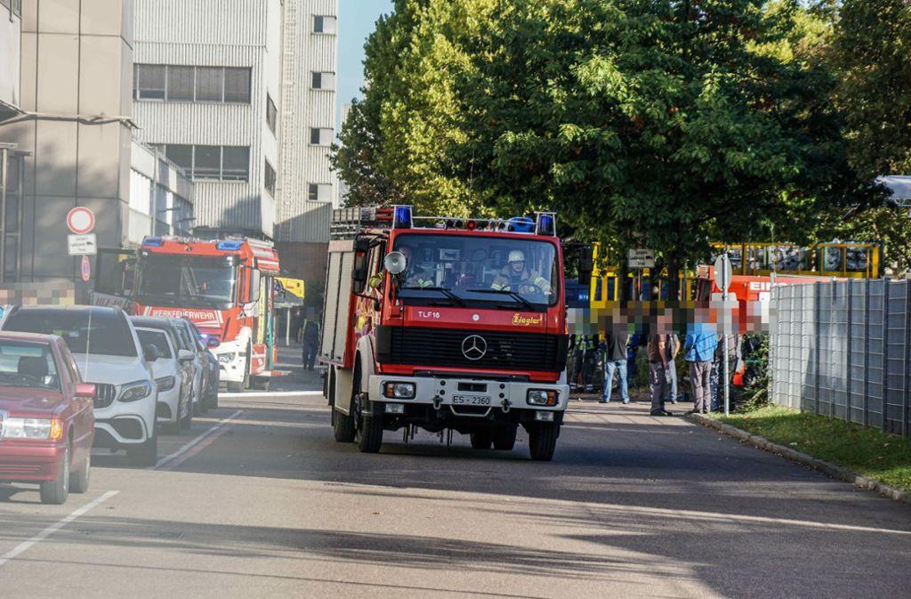 Die Feuerwehren von Daimler und aus Esslingen waren im Einsatz. Foto: SDMG/SDMG / Kohls