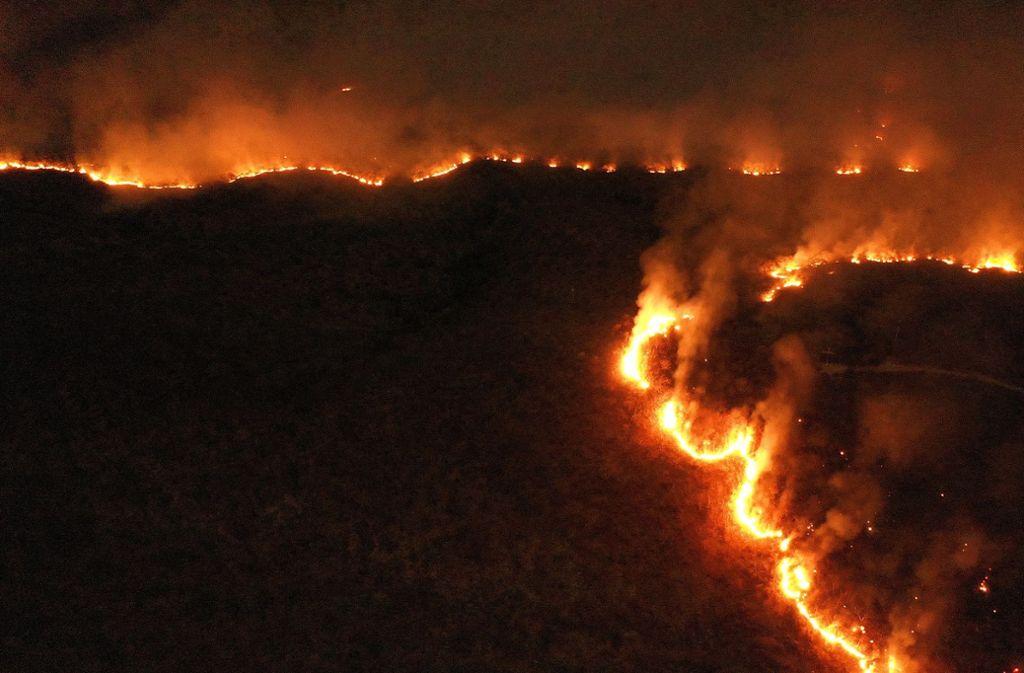 Brasilien Regenwald Brand
