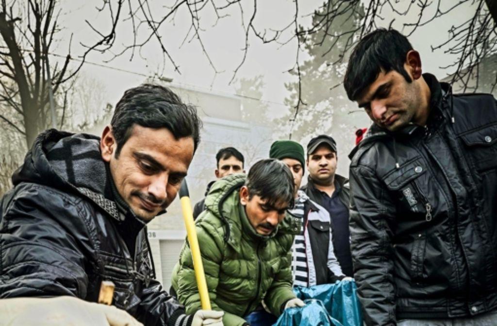 40 Freiwillige haben in der Haußmann-straße  Müll eingesammelt.Foto:Lg/Kovalenko Foto: