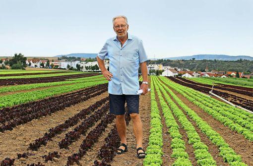 Wie aus einer kleinen Gärtnerei ein Gemüseimperium wurde