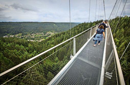 Brückenboom im Schwarzwald