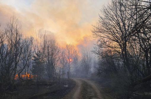 Löscherfolge bei Bränden in Tschernobyl-Zone
