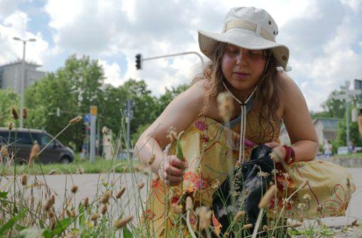 Diese essbaren Kräuter wachsen in Stuttgart