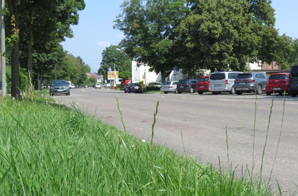 Aktuell gibt es viele und kostenlose Parkplätze an der Osterbronnstraße. Foto: Archiv Sandra Hintermayr