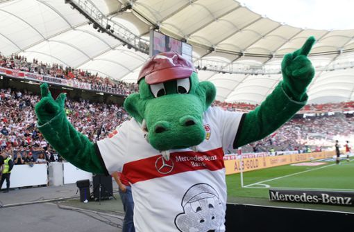 Sieht so das neue VfB-Sondertrikot aus?