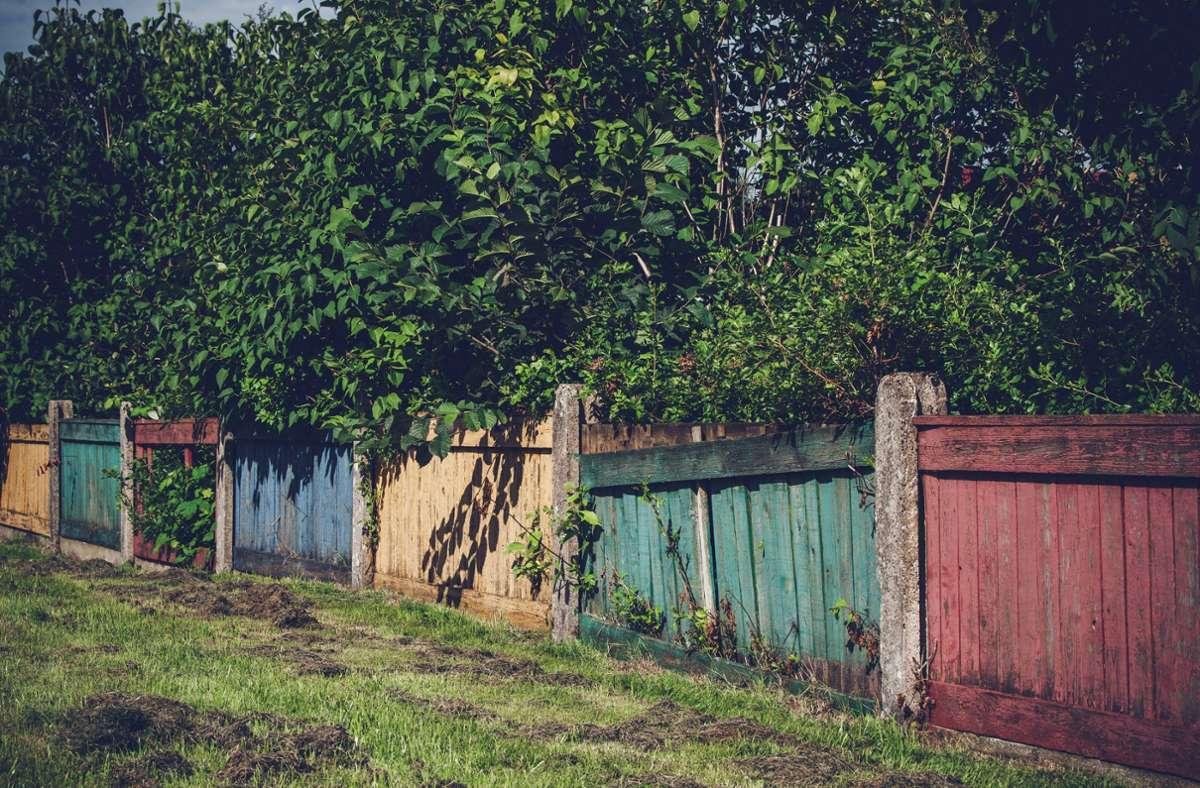 Darf man sich über den Zaun des Nachbarn beschweren? In der Regel kann der Besitzer frei über seinen Zaun bestimmen – aber es gibt Ausnahmen. Foto: imago/YAY Images