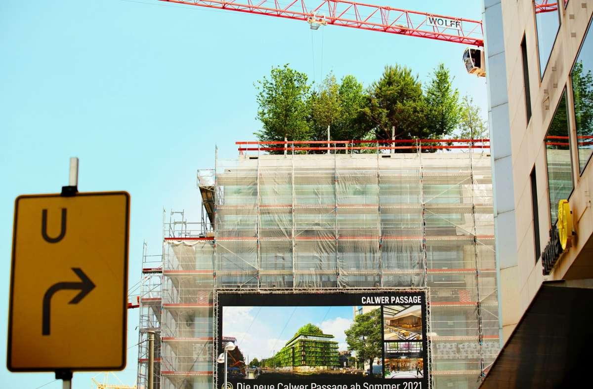 Auf dem Neubau wachsen Bäume auf dem Dach. Foto: Lichtgut/Leif Piechowski