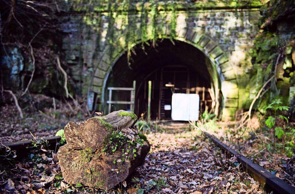2018 sollen hier durch den Hirsauer Tunnel wieder Züge fahren. Foto: dpa