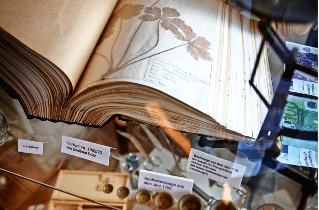 Herbarium, Apothekerwaage und  Schröpfkopf gehören zu den  Exponaten Foto: Stoppel