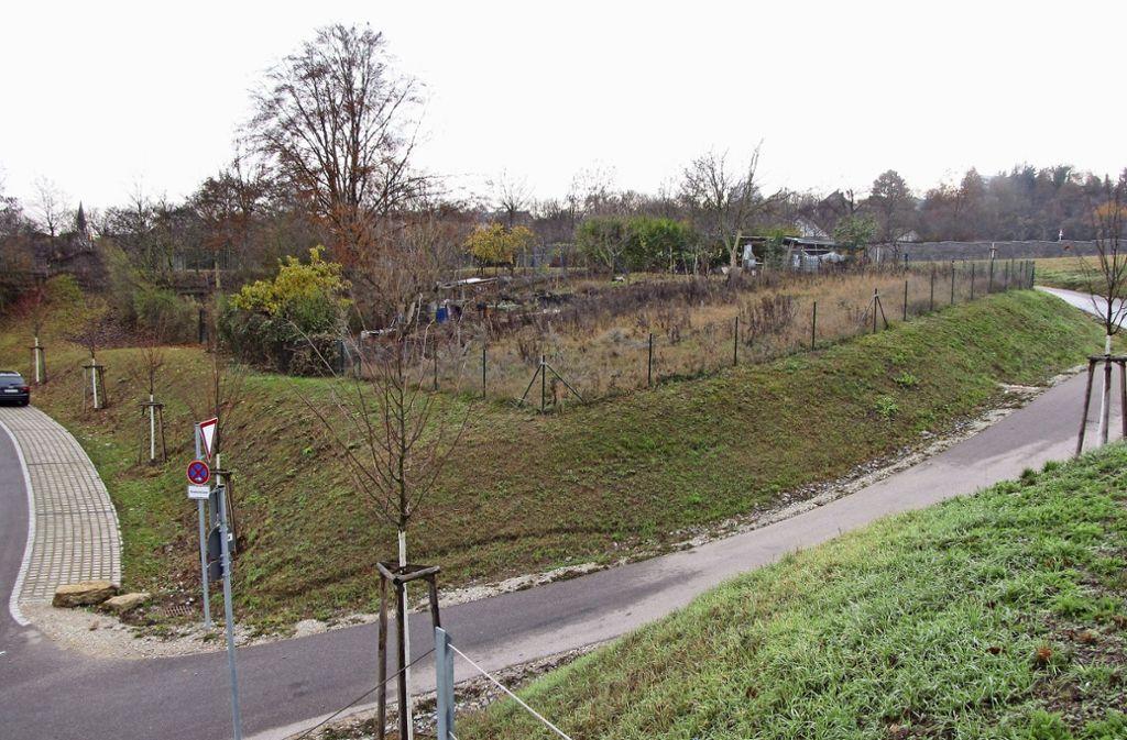Das soll der neue Standort für die Freiwillige Feuerwehr Münster werden. Foto: Rehberger