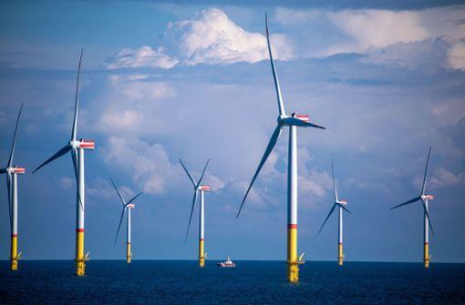 Länder einigen sich auf Naturschutz-Standards für die Windkraft