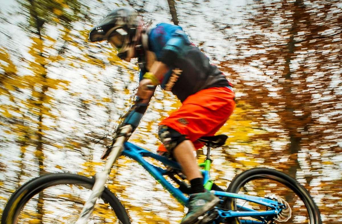 Konfliktträchtiger Sport:  Mountainbiking im hiesigen  Wald Foto: Lichtgut/Max Kovalenko