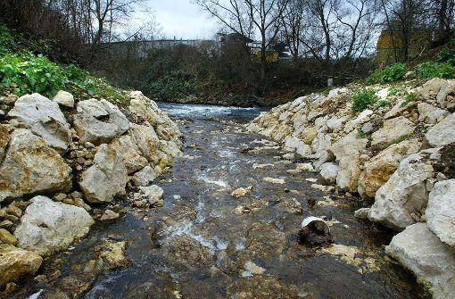 Unscheinbares Gewässer mit viel Zerstörungspotenzial