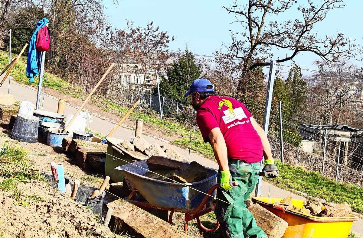 Auf der Karlshöhe werden die alten Trockenmauern erneuert. Foto: Kathrin Wesely