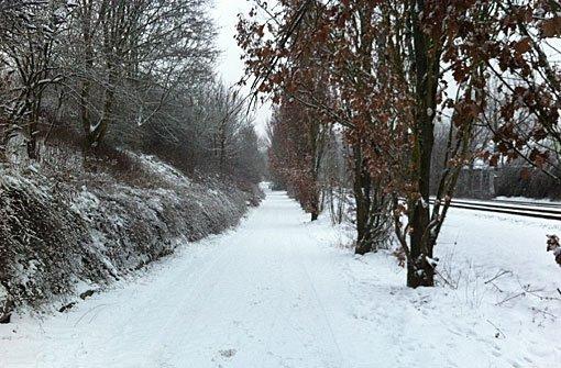 Dem Blitzeis folgt der Schnee