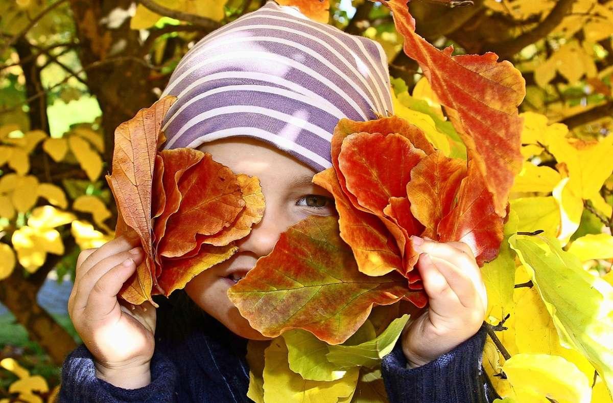 Vor allem Kinder sollen die Natur mit allen Sinnen erleben. Dazu will die Vaihingerin Elke Bruns ein Öko-Werkle ins Leben rufen. Foto: dpa/Stephanie Pilick