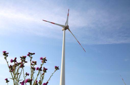 Das planen  die Parteien beim Klimaschutz