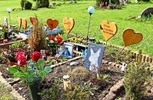 Sind gemeinsame Bestattungen in Stuttgart möglich?