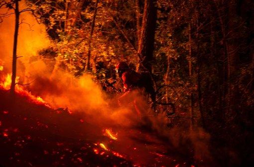 Waldbrände halten Portugal und Spanien in Atem
