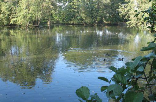 Angler wollen mehr Schlamm aus dem See raus haben