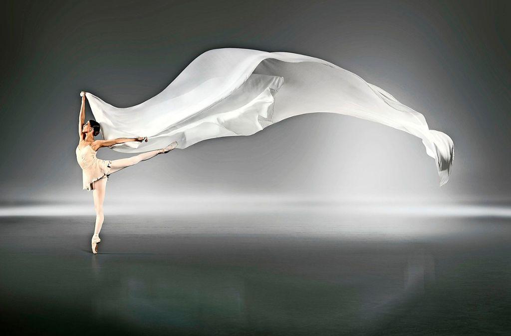 Spitzenleistungen wie die des Stuttgarter Balletts und des Sportwagenherstellers Porsche haben mehr gemeinsam, als es auf den ersten Blick scheinen mag.    Foto: T. Strogalski
