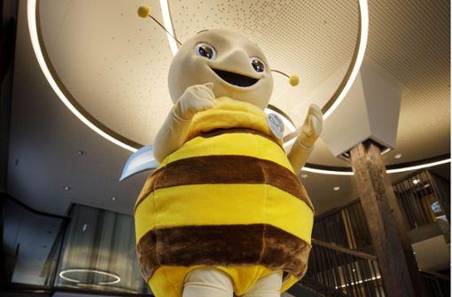 """""""Mit dem Honigsammeln wird es knapp"""""""