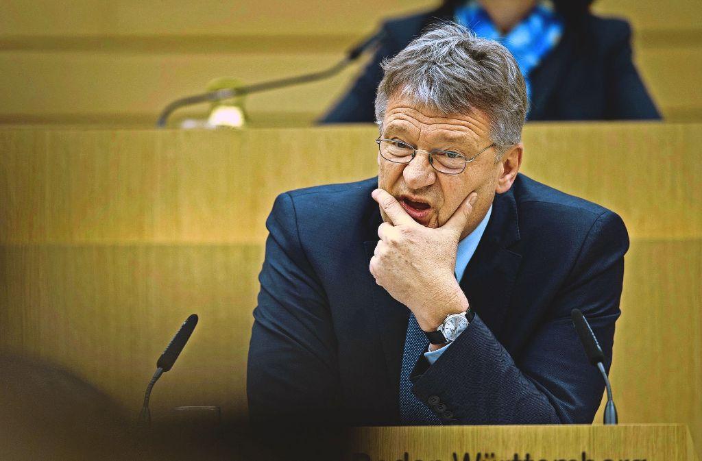 Die AfD-Fraktion – hier  Vormann Jörg Meuthen während einer Landtagssitzung  – schweigt zu ihren Mitarbeitern. Foto: dpa