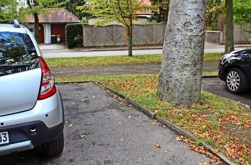 Freie Wähler fordern Parkmarkierungen