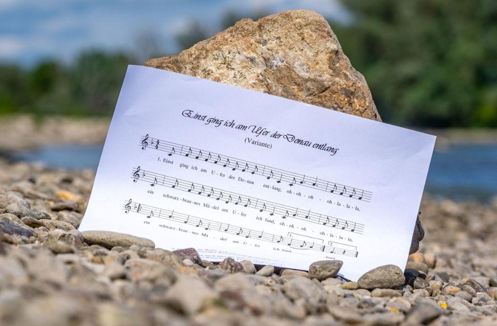Der Text des Donauliedes hat es in sich. Eine Studentin hat nun eine Online-Petition gegen das Volkslied gestartet. Foto: dpa/Armin Weigel
