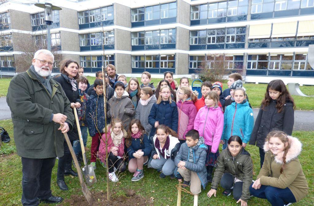 Ulrich Burr, Brigitte Lösch (v.l.) und die Fünftklässler des Gottlieb-Daimler-Gymnasiums haben eine Winterlinde gepflanzt. Foto: privat
