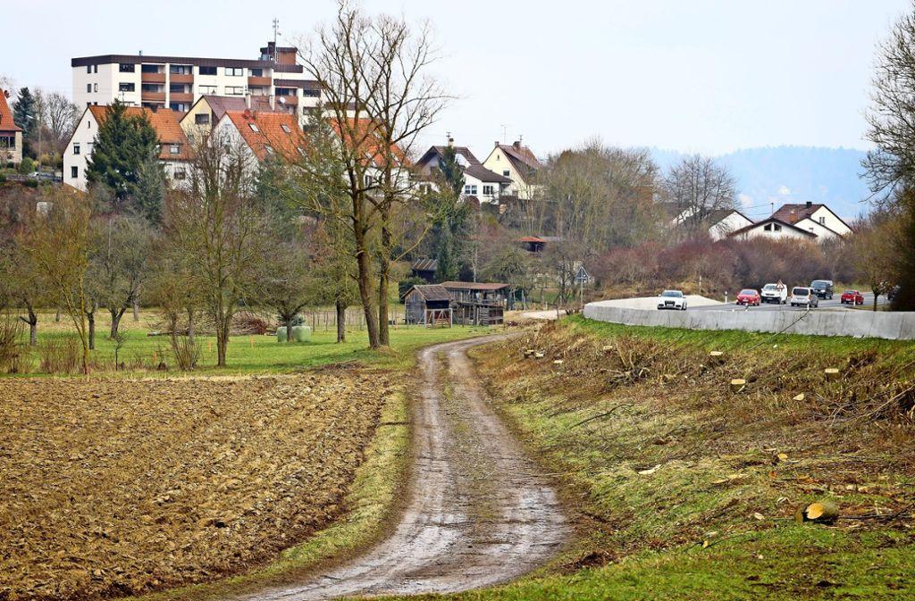 Zwischen dem Waldrand und dem bereits bestehenden Erdwall (im Hintergrund, mit Büschen bewachsen) entsteht bald der neue Lärmschutz. Foto: factum/Granville