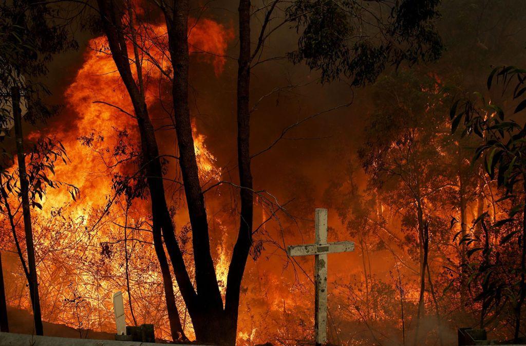 Ein Buschfeuer brennt am Pacific Highway bei Taree, 350 Kilometer nördlich von Sydney. Foto: dpa/Darren Pateman