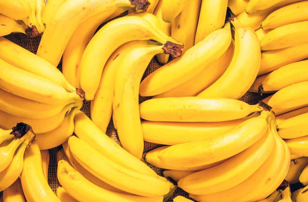 Unter Bananen fand die portugiesische Polizei Kokain. (Symbolbild) Foto: shutterstock/Hanna_photo