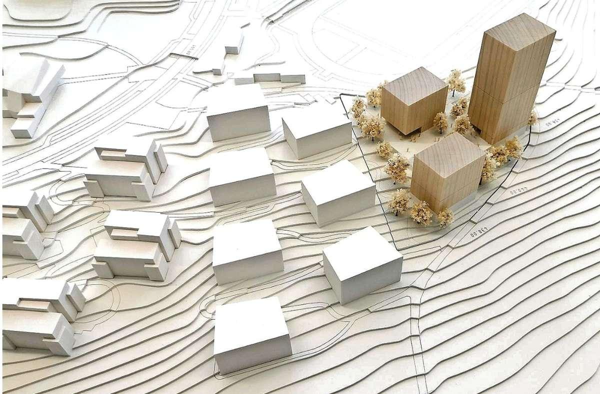 Das Architekturbüro Riehle+Assoziierte aus Reutlingen präsentierte den Siegerentwurf für das neue Wohnheim mit 300 Einheiten in drei Gebäuden. Foto: Schreiberplan